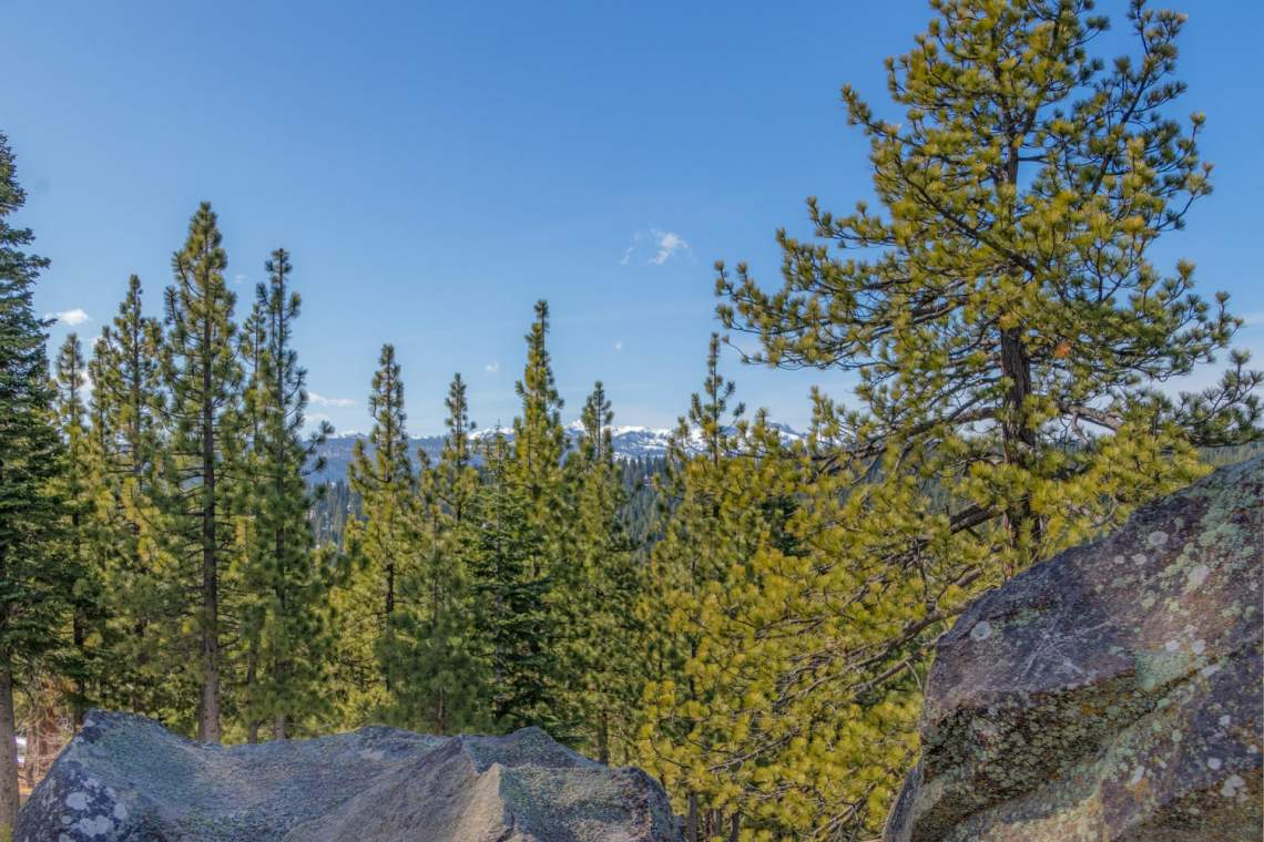 13005-Falcon-Point-Pl-Truckee-large-049-024-View-1500x1000-72dpi