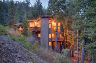 Alpine Meadows Tree House