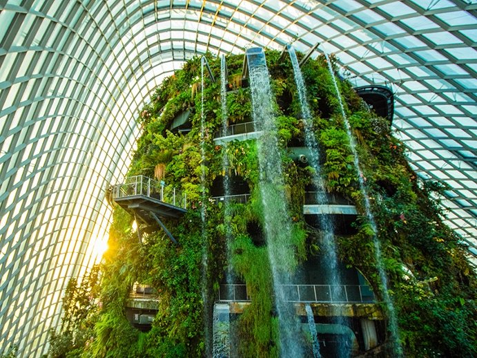 Global Greenhouses: The Cloud Forest in Singapore's Gardens by the Bay Greenhouse