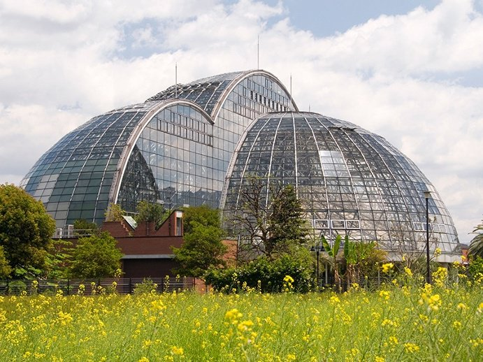 Global Greenhouses: Yumenoshima Island's Tropical Greenhouse Dome—actually three domes—contain around 1,000 species of plants